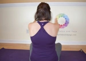 Seated scapular protraction