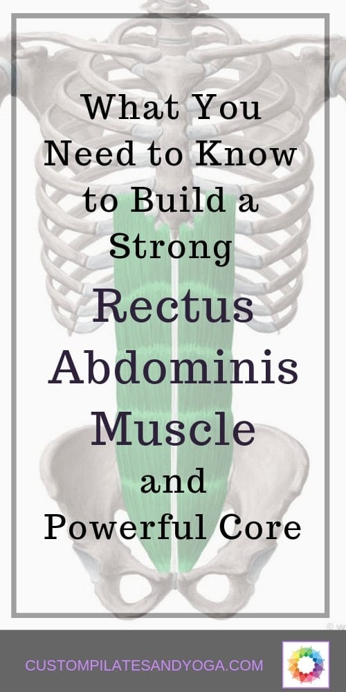 a pin with a drawing of the rectus abdominis muscle
