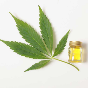 what is cbd oil and why is everyone talking about it